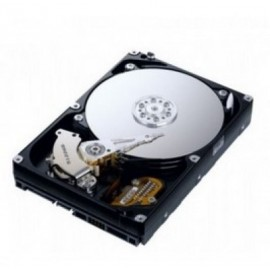 Disco Duro WESTERN DIGITAL New Pull, 3000 GB